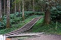 林間遊戲場步道 Forest Playground Footpath - panoramio.jpg