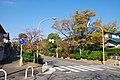 桃山台にて 2013.12.01 - panoramio.jpg