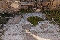 0033פסיפס בארמון הורדוס אנטיפס בחפירות טבריה הרומית.jpg
