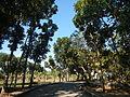09733jfMaharlika Highway Good Shepherd Chapel San Ildefonso Bulacanfvf 10.JPG