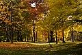131103 Hokkaido University Botanical Gardens Sapporo Hokkaido Japan19o.jpg