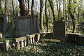 1483viki Cmentarz żydowski przy ul. Lotniczej. Foto Barbara Maliszewska.jpg