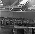 1960 Manège de traite à Brouessy-1-cliche Jean Joseph Weber.jpg
