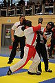 2010-02-20-kickboxen-by-RalfR-49.jpg