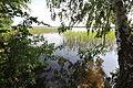2011-07-10-parsteinsee-by-RalfR-11.jpg