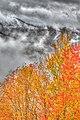 2011-365-284 Autumn in the Appalachians (6236339453).jpg