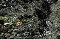 2012-12-07 22-53-22-houille-29f.jpg