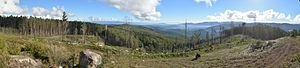 Central Highlands (Victoria) - Image: 2013 07 09 Mount Beenak summit panorama