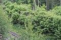 20150525.Schiefe Ebene Lehrpfad.-064.jpg