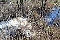 2015 48 Национальный парк Мещёрский.jpg
