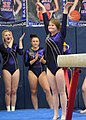 2015 District Championships West Geauga 27.jpg