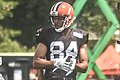 2016 Cleveland Browns Training Camp (28075236404).jpg