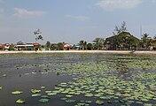 2016 Kampot, Staw lotosów (04).jpg