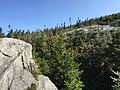2017-09-11 10 33 45 View north-northeast from the Maple Ridge Trail at about 2,920 feet above sea level on the western slopes of Mount Mansfield within Mount Mansfield State Forest in Underhill, Chittenden County, Vermont.jpg