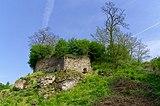 20180429 Zamek w Podgrodziu koło Ćmielowa 2431 DxO.jpg