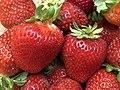2021-08-14 15 11 33 Strawberries in the Franklin Farm section of Oak Hill, Fairfax County, Virginia.jpg