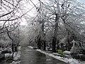 29. Bucuresti, Romania. Din Ciclul BUCURESTIUL SUB ASEDIUL FRIGULUI, Ianuarie 2019. Cimitirul Bellu Catolic. (7).jpg