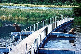Brooks Camp - Bears on the bridge over the Brooks River.
