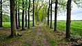 3956 Leersum, Netherlands - panoramio (22).jpg
