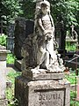 46-101-4016 Пам 'ятник на могилі Дзюні.jpg