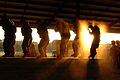 82nd Airborne Division conduct pre-jump mock door training.jpg