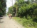 9759Poblacion III Del Carmen, Alaminos, Road 12.jpg