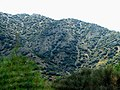 A@a agios theodoros area limassol cy - panoramio (4).jpg