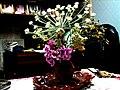 A@a wildflowers - panoramio (1).jpg