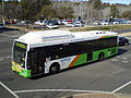 ACTION-bus-333 08 W.jpg