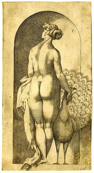 Cultural history of the buttocks - The Mannerist movement was not afraid to exaggerate body proportions for an effect considered attractive; Juno in a niche, engraving by Jacopo Caraglio, probably of a drawing by Rosso Fiorentino, 1526