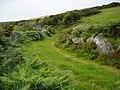 A Pleasant Track - geograph.org.uk - 527047.jpg