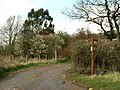 A footpath and bridleway meeting point - geograph.org.uk - 756519.jpg