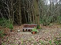 A memorial seat by a footpath in West Blean Wood - geograph.org.uk - 621666.jpg