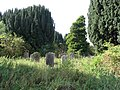 A neglected graveyard at Old Mertoun House near St Boswells - geograph.org.uk - 239686.jpg