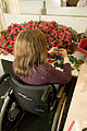 A volunteer constructs poppies at the Royal British Legion Poppy Factory, Richmond MOD 45148163.jpg