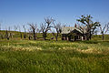 Abandoned Homestead (6005188706).jpg