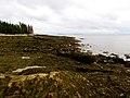 Acadia National Park (8111149285).jpg