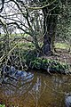 Across Pincey Brook east of Sheering Road in Sheering, Essex, England.jpg