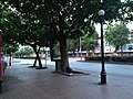 Adana, Reşatbey Mh., Seyhan-Adana, Turkey - panoramio (41).jpg