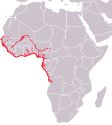 Map of Africa showing highlighted range along the western coast from Mali south to Angola and in portions of river systems