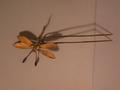 Agulla de pit Museu Abelló 4165.png