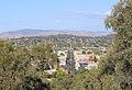 Albury, New South Wales.jpg