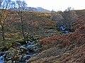 Allt Shuas in Fin Glen - geograph.org.uk - 679819.jpg