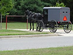 Amish horse and buggy parking space, July 2016.