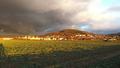 Amphibienschutzgebiet Gelnhausen-Meerholz 2014-02-02-14-55-50.png