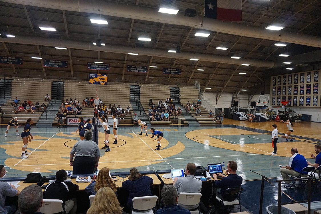 Angelo State vs. Texas A&M–Commerce volleyball 2017 08.jpg