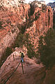 Angels Landing Trail (3679603026).jpg
