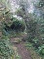 Anglesey Coast Path - geograph.org.uk - 1742093.jpg