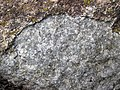 Anorthosite xenolith (anorthosite series, Duluth Complex, Mesoproterozoic, 1099 Ma; Keene Creek East Skyline Parkway roadcut, Duluth, Minnesota, USA) 5 (22040450638).jpg