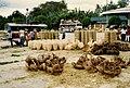 Antequera, Bohol.jpg